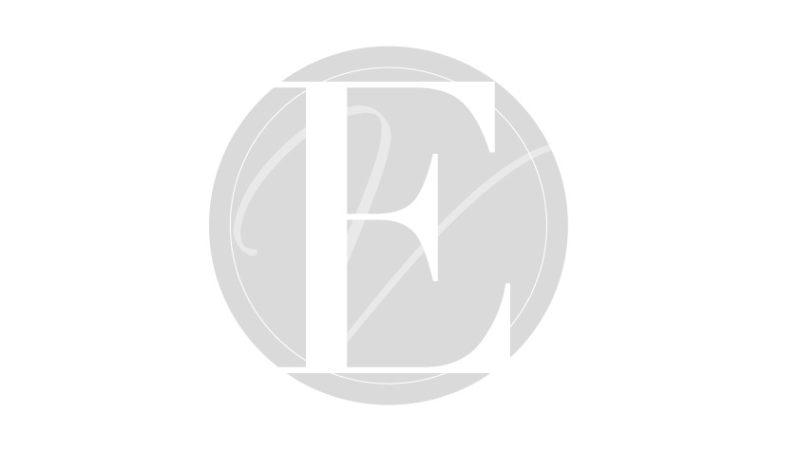 Création et conception d'un projet immobilier Belvedere