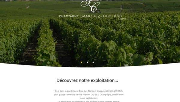 site web Sanchez-Collard