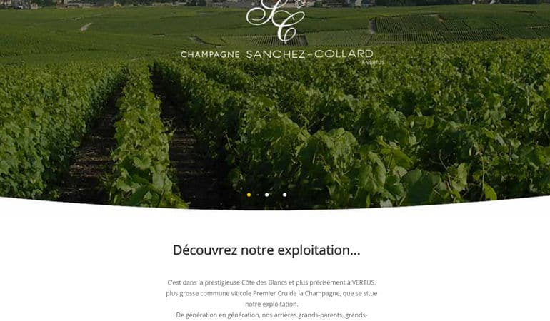 site web Sanchez-Collard