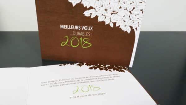carte de vœux Coforaisne 2018
