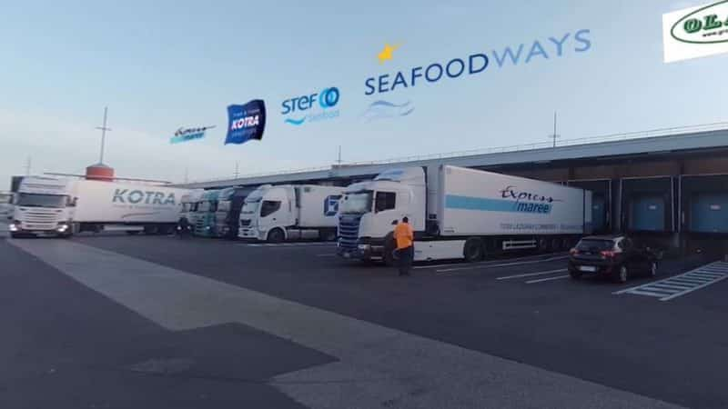 seafood video 360 equinoxes site