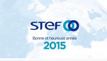 STEF Voeux 2015