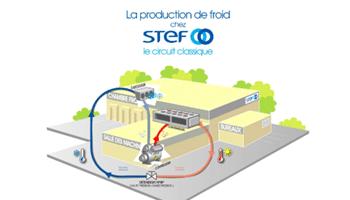 STEF – la production de froid